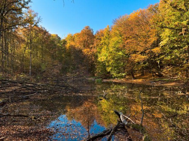 Märkische Schweiz Nature Park, Buckow