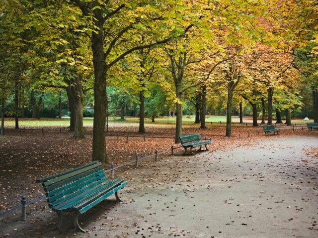 Autumnal Berlin