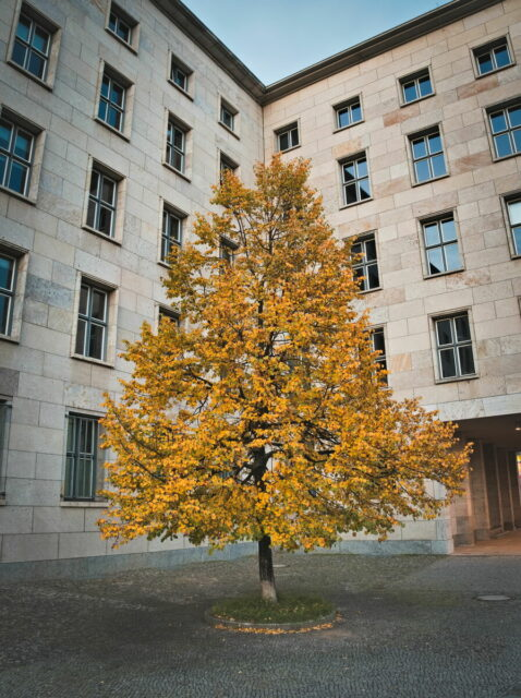 Autumnal Berlin