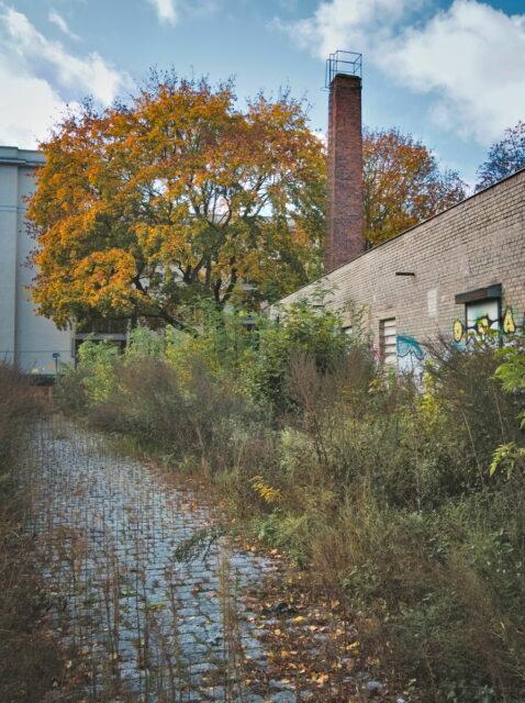 Autumnal Berlin, Weißensee