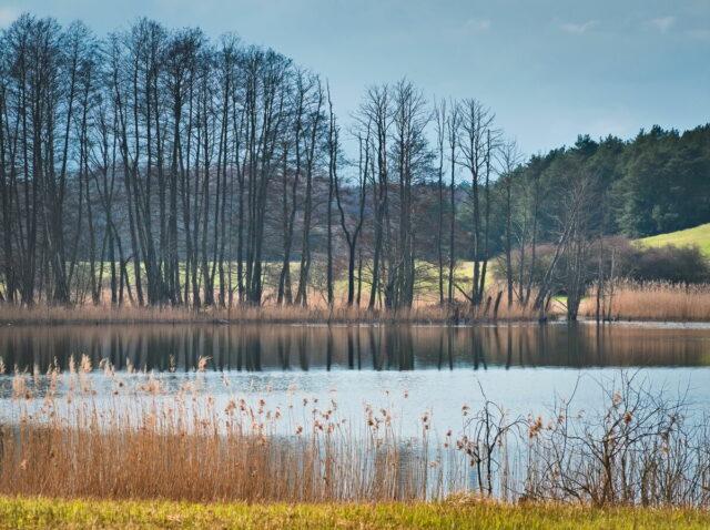 Biesenthaler Becken