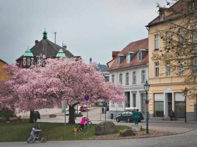 Bad Freienwalde, Oderbruch, Alte Oder