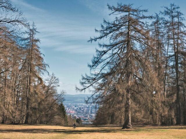 Bergpark Wilhelmshöhe is a landscape park in Kassel, Germany