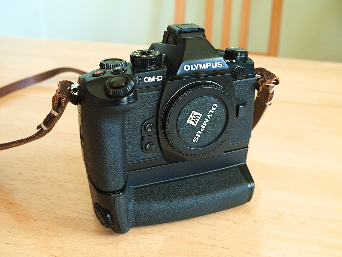 Olympus OM-D E-M1 followed by E-M1X ?