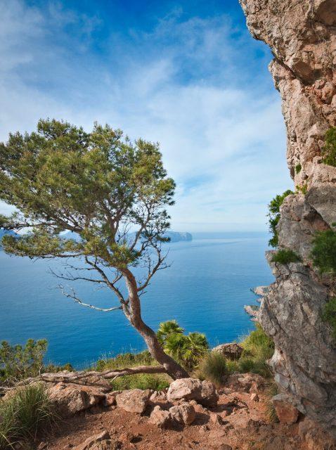 Alcudia Bay, Mallorca, Balears